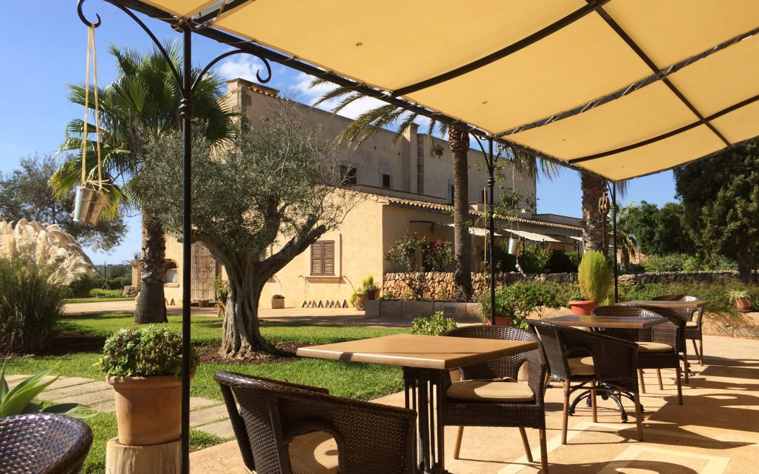 5 Compelling Reasons to Install Canopy Awnings in Your Home
